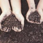 Restitution de compost